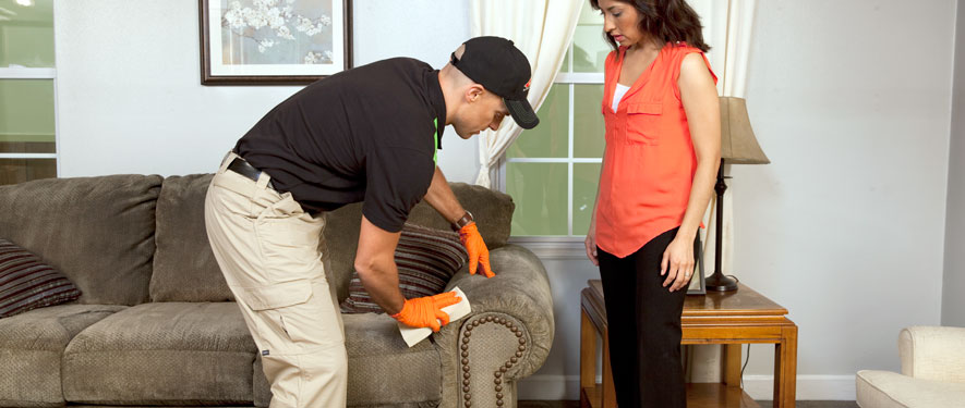 Springfield, MA carpet upholstery cleaning