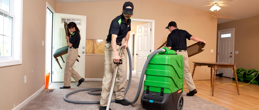 Springfield, MA cleaning services